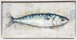Cornish Mackerel