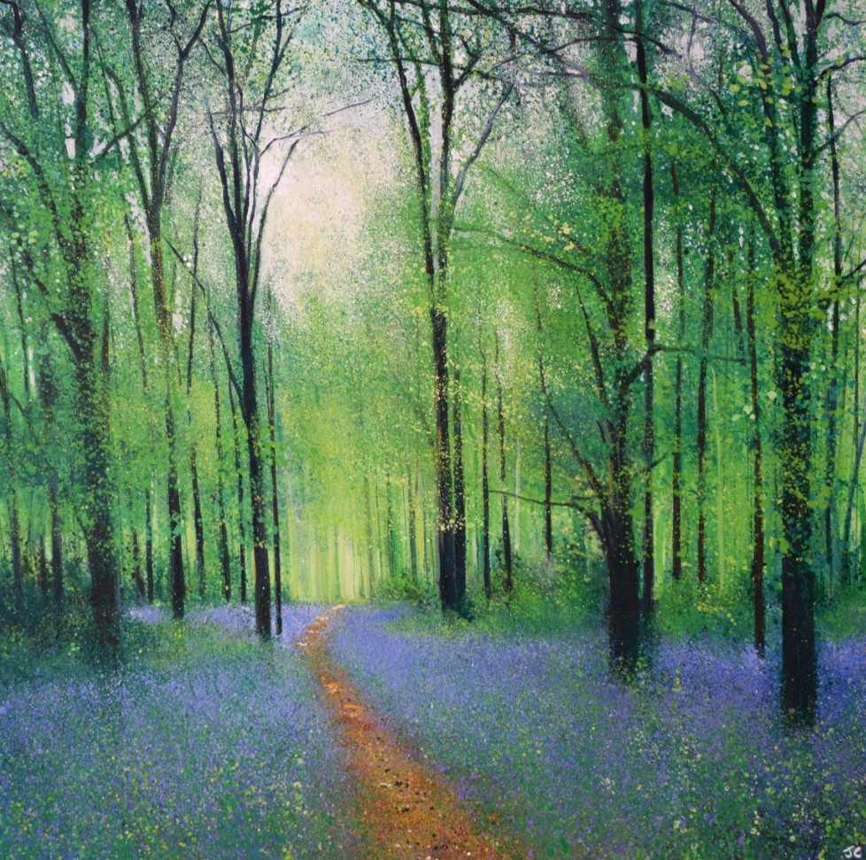 Sea of bluebells by John Connolly